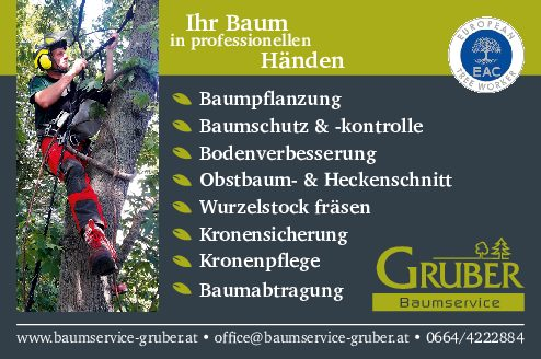 Ing. Hermann Gruber - Baumservice