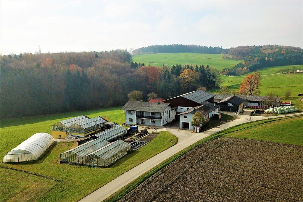 Ziegelhof